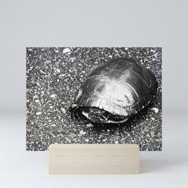 Paintless Turtle Mini Art Print