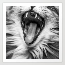 Cat Roar! Art Print