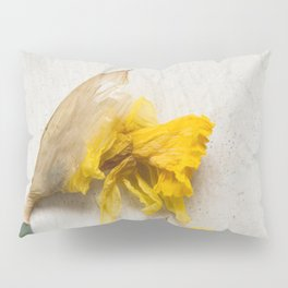 Daffodil 2 Pillow Sham