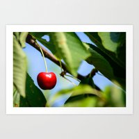 cherry Art Prints featuring cherry by hannes cmarits (hannes61)