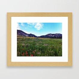 Albion in the Summer Framed Art Print