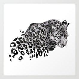 Cosmic Leopard Art Print