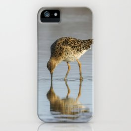 Ruff water bird (Philomachus pugnax) Ruff in water iPhone Case