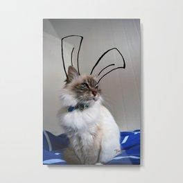 Easter cat Metal Print