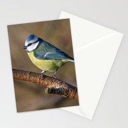 Wildlife Blue tit bird Stationery Cards