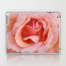 Peach Rose Laptop & iPad Skin