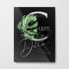 Carpe Diem – Inspiring quote in silver Metal Print
