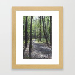 The Path Less Traveled Framed Art Print