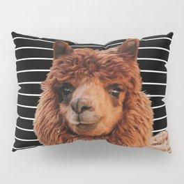 Llama Drama Pillow Sham