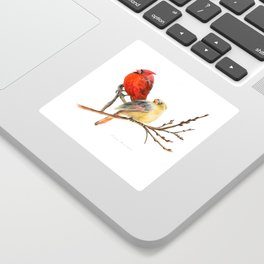 The Perfect Pair - Male and Female Cardinal by Teresa Thompson Sticker