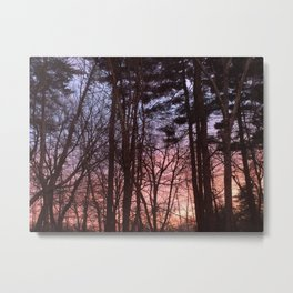 Rainbow Woods Metal Print