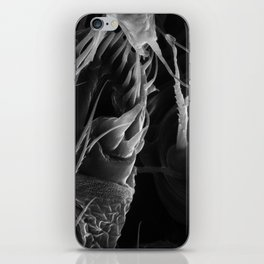 Spinnerets iPhone Skin