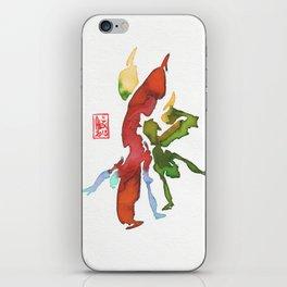 Capoeira 262 iPhone Skin