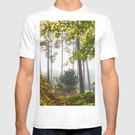 Pine trees viewed through autumnal Beech tree leaves. Norfolk, UK. T-shirt