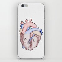 anatomical heart iPhone & iPod Skins featuring Anatomical Heart by JodiYoung