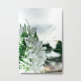 Color Botanical 5 Metal Print