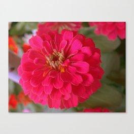 Red Flower (Flor Roja) Canvas Print