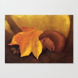 Sleeping Squirrel Canvas Print