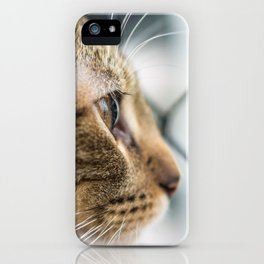 Cat Tax iPhone Case