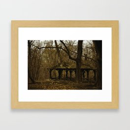 "Central ""Freaky"" Park Framed Art Print"