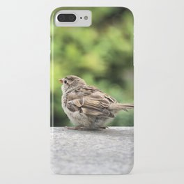 Little Feather Tasting iPhone Case