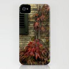 vine. iPhone (4, 4s) Slim Case
