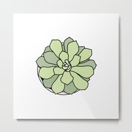 Green suculent Metal Print
