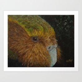 Kakapo (Strigops habroptilus) Art Print