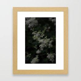 Soft as a Whisper Framed Art Print