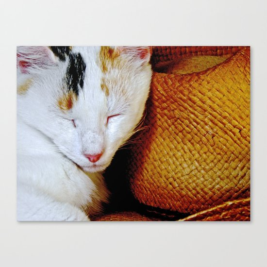 The Cowboy's Cat Canvas Print