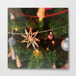 Christmas photo Metal Print