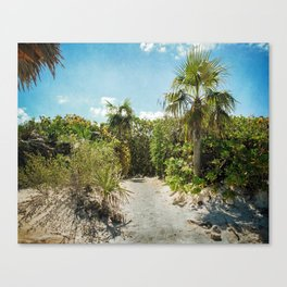 Pathway to Paradise Canvas Print