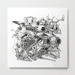 Animal Skulls Metal Print