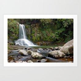 Waiau Falls Art Print