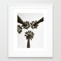 palm trees Framed Art Prints featuring palm trees by Joao Bizarro