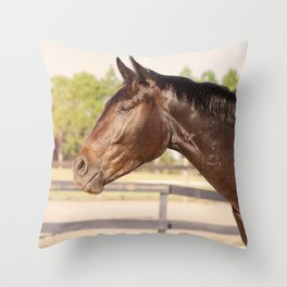 Bubba in Sunlight Throw Pillow