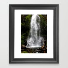 Nature's Shower Framed Art Print