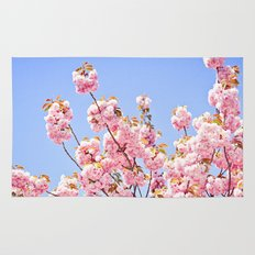 Pink Cherry Blossoms Against Blue Sky Rug