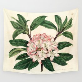 Rhododendron maximum 'Great laurel' Wall Tapestry
