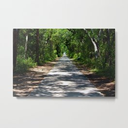 Maritime Forest In The South Metal Print