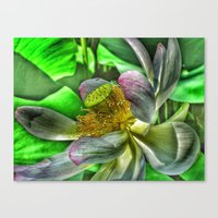 lotus flower Canvas Prints featuring Lotus by Joke Vermeer