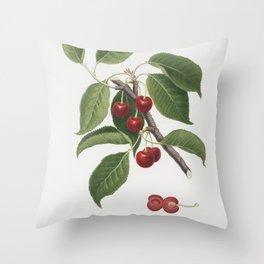 Sour Cherry (Cerasus cordiformis duracina) from Pomona Italiana (1817 - 1839) by Giorgio Gallesio (1 Throw Pillow