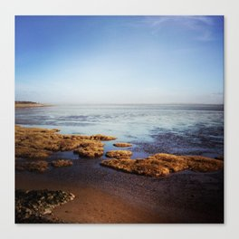 Low Tide Seascape Canvas Print
