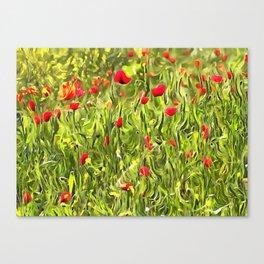 Surreal Hypnotic Poppies Canvas Print