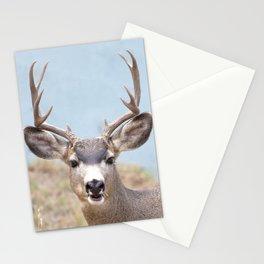 Watercolor Deer, Mule 14, Estes Park, Colorado, Hi There! Stationery Cards