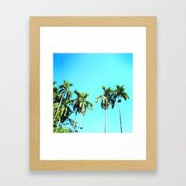 Beetle Nut Tree Framed Art Print