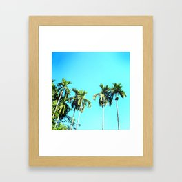 Beetle Nut Tree Framed Art Print