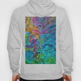 355 - Abstract garden design Hoody