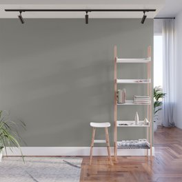 Smokey Mountain Gray Solid Color Pairs W/ Behr Paint's 2020 Forecast Trending Color Battleship Gray Wall Mural