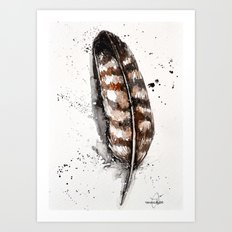 hawk feather Art Print